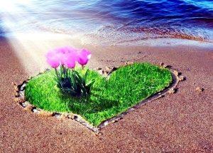любовь мир радость