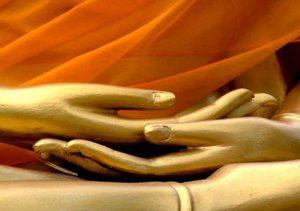 45845-viniyoga-lo-yoga-del-respiro-e-del-rispetto-del-corpo.s