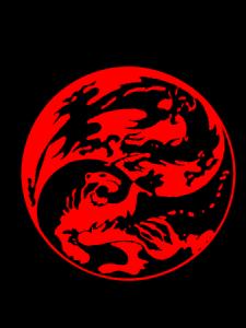 drakon-tigr-e1415627863116-225x300